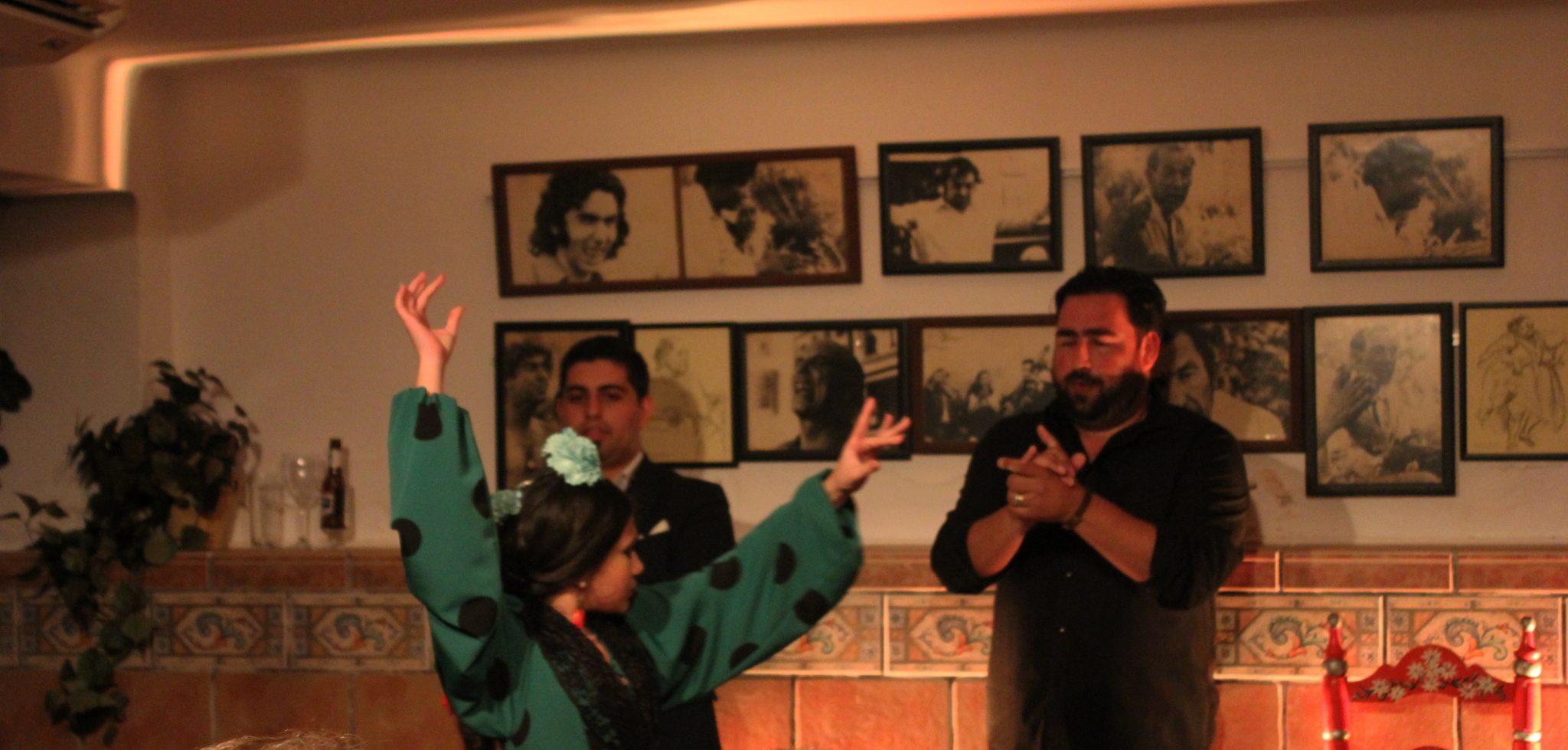 flamenco in nerja